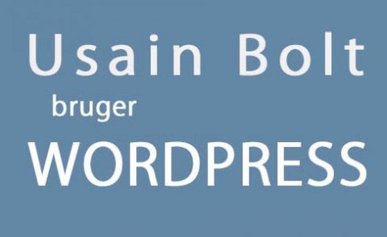 usain-bolt-blogillustrationer-1-480x295